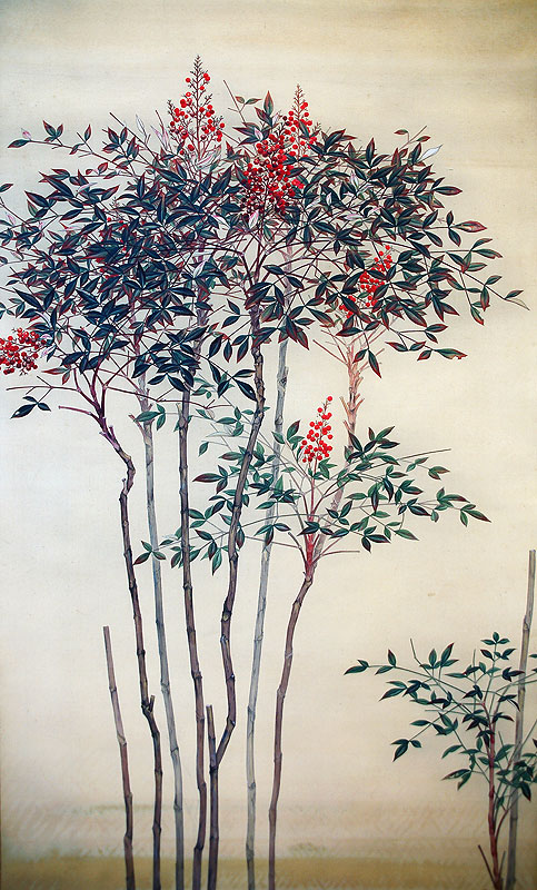 Nandin - 南天絵圖
