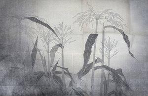丸井金猊『玉蜀黍』