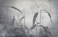 丸井金猊 植物圖展