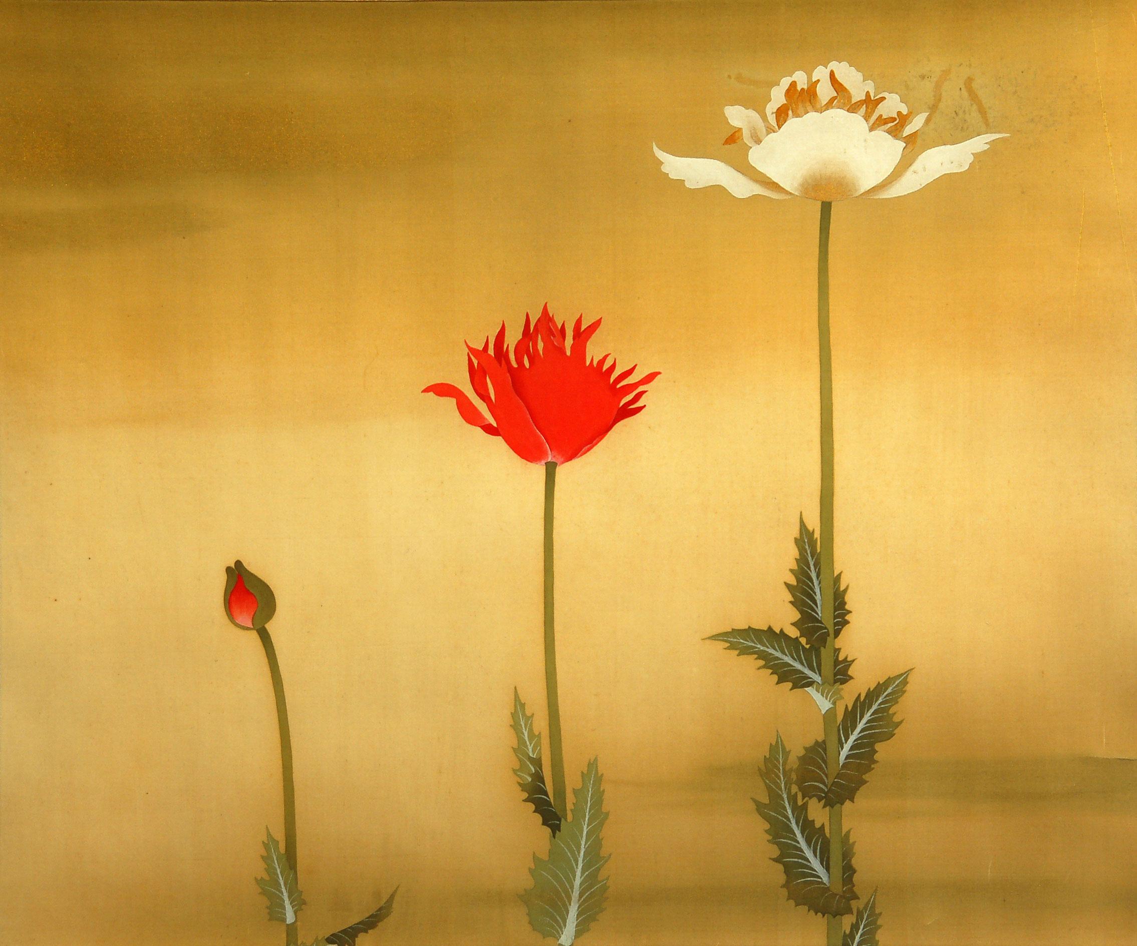 芥子花圖 - Opium Poppy