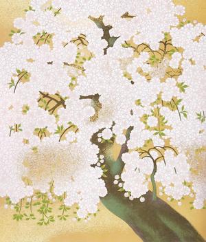 橋本明治《朝陽桜(縮図)》1968年